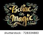 hand drawn brush lettering... | Shutterstock .eps vector #728334883