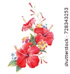 watercolor tropical composition ... | Shutterstock . vector #728343253