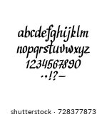 vector hand written italic... | Shutterstock .eps vector #728377873