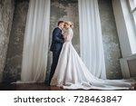 happy newlyweds gently embrace... | Shutterstock . vector #728463847