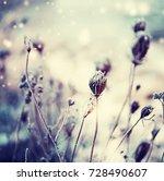 winter background frozen grass | Shutterstock . vector #728490607