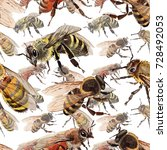 exotic bee wild insect pattern...   Shutterstock . vector #728492053