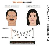 sex linked dominant hereditary...   Shutterstock .eps vector #728796097
