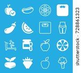 diet icons set. set of 16 diet... | Shutterstock .eps vector #728861323