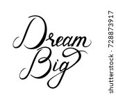 dream big hand painted brush... | Shutterstock .eps vector #728873917