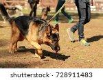 training class for a k9 german... | Shutterstock . vector #728911483
