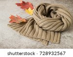 autumn. a warm knitted scarf... | Shutterstock . vector #728932567
