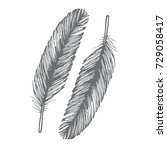 black feathers   Shutterstock .eps vector #729058417