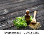 glass bottle with oregano oil... | Shutterstock . vector #729159253