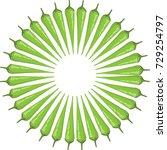 chili icon | Shutterstock .eps vector #729254797