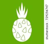 pitaya  dragon fruit icon white ... | Shutterstock .eps vector #729256747