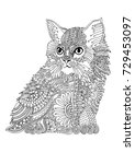 hand drawn cat. sketch for anti ... | Shutterstock .eps vector #729453097