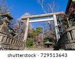 stone torii gate in japanese... | Shutterstock . vector #729513643