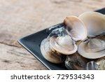 fresh enamel venus shell ... | Shutterstock . vector #729534343