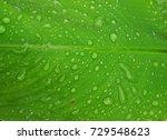 drop of dew  on leaf. | Shutterstock . vector #729548623