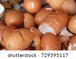 egg shell close up | Shutterstock . vector #729595117