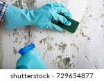 housekeeper's hand with glove... | Shutterstock . vector #729654877