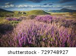 blooming heather at scenic... | Shutterstock . vector #729748927