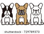 french bulldog funny pet dog | Shutterstock .eps vector #729789373