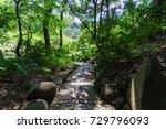 koishikawa korakuen  tokyo... | Shutterstock . vector #729796093
