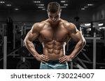 sexy muscular man in gym ... | Shutterstock . vector #730224007
