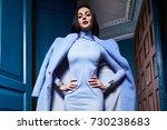 beautiful business woman lady... | Shutterstock . vector #730238683