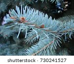 natural old christmas tree wood ... | Shutterstock . vector #730241527