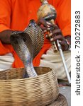 Small photo of The charmer plays a gourd flute and his snakes respond. Dancing cobras. Jaipur, Rajasthan, India.