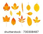 set of retouched autumn leaves... | Shutterstock . vector #730308487