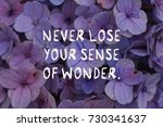 "Small photo of Motivational quotes ""never lose your sense of wonder"". Flower purple background."