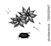 star anise vector drawing. hand ... | Shutterstock .eps vector #730535947