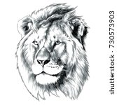 Stock vector sketch of lion head vector graphics monochrome black and white drawing 730573903