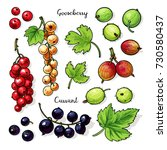 fruits  berries with leaves...   Shutterstock .eps vector #730580437