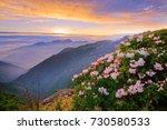 spring scenery of hehuan...   Shutterstock . vector #730580533
