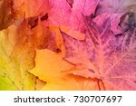 background with colorful ... | Shutterstock . vector #730707697