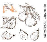 pear  vintage engraved... | Shutterstock .eps vector #730720033
