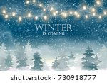 Winter is coming. Winter Woodland Landscape with falling snow, lights garlands, christmas tree. Design template for flyer, banner, invitation, congratulation, poster design. Vector illustration. | Shutterstock vector #730918777