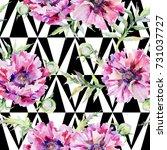 wildflower poppy flower pattern ... | Shutterstock . vector #731037727