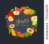 fruits and berries frame.... | Shutterstock .eps vector #731116243