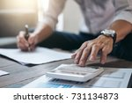 business financing accounting... | Shutterstock . vector #731134873