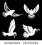 pigeon or dove  white bird... | Shutterstock .eps vector #731152333