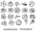 flower set | Shutterstock .eps vector #731162647