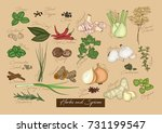 vector illustration of... | Shutterstock .eps vector #731199547