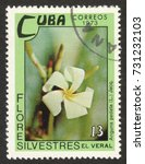 "Small photo of MOSCOW RUSSIA - CIRCA OCTOBER 2017: a post stamp printed in CUBA shows Anguria pedata flower, the series ""The wild flowers"", circa 1973"