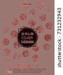 rose quartz glossy background.... | Shutterstock .eps vector #731232943
