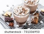 winter hot drink. hot chocolate ... | Shutterstock . vector #731336953