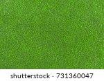 lawn  carpet    Shutterstock . vector #731360047