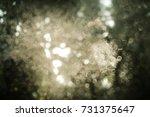 abstract green bokeh background. | Shutterstock . vector #731375647