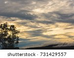 golden sky with trees | Shutterstock . vector #731429557
