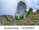 giant rock clled daube. on a... | Shutterstock . vector #731499037